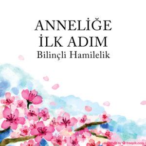 ANNELIGE-ILK-ADIM-SOCIAL